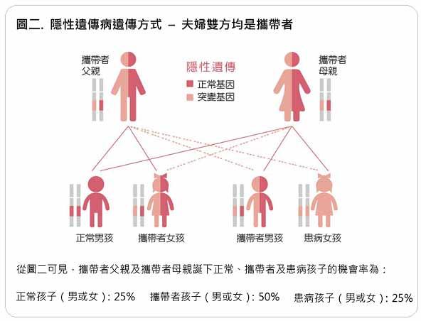 孕前遗传病基因检测可以查哪些项目?